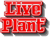 LivePlant Logo
