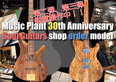 MUSIC PLANT 30th Anniversary Sugi Guitars Order Model