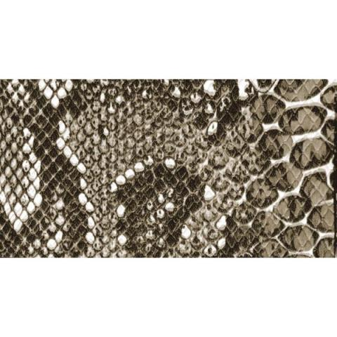 Cabinet Covering Snakeskinサムネイル
