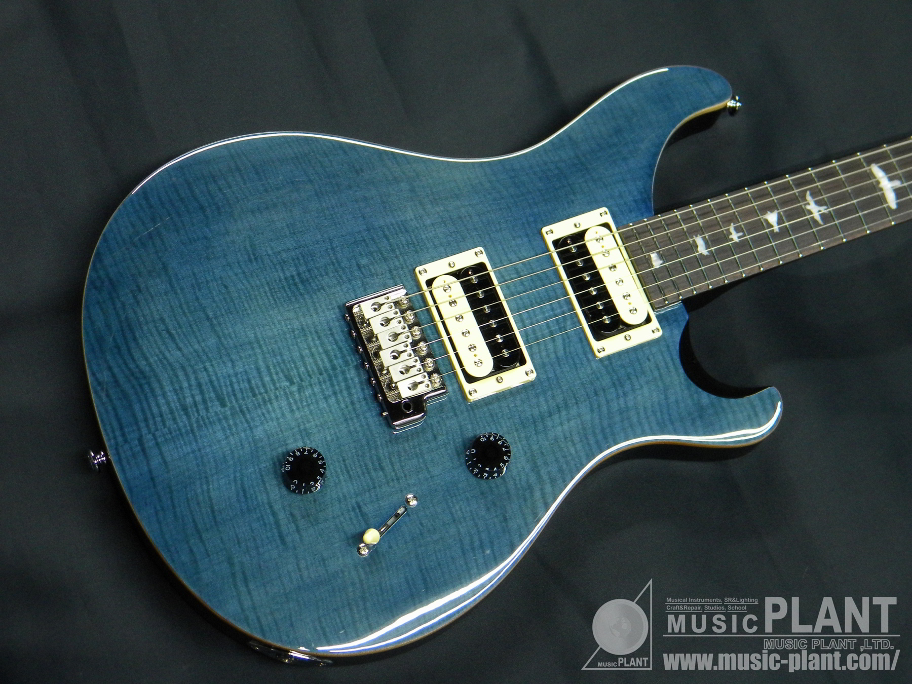 SE Custom 24 Beveled Top Whale Blue追加画像
