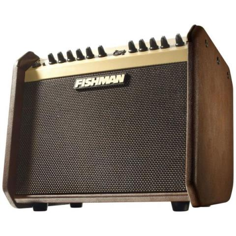 FISHMANLOUDBOX MINI