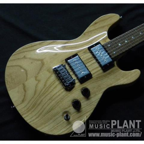 APG-DLX JPC 2011 Naturalサムネイル