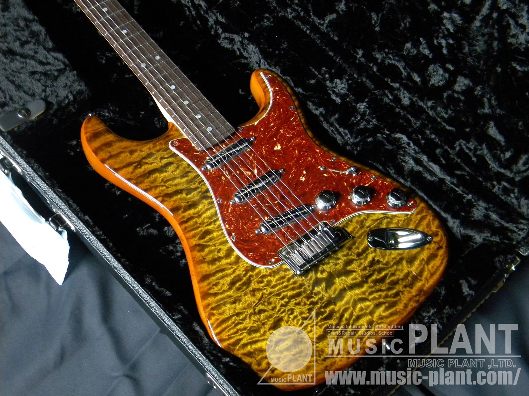 2014 Limited Model Quilt Maple Top Artisan Stratocaster Tigereye/Rosewood追加画像