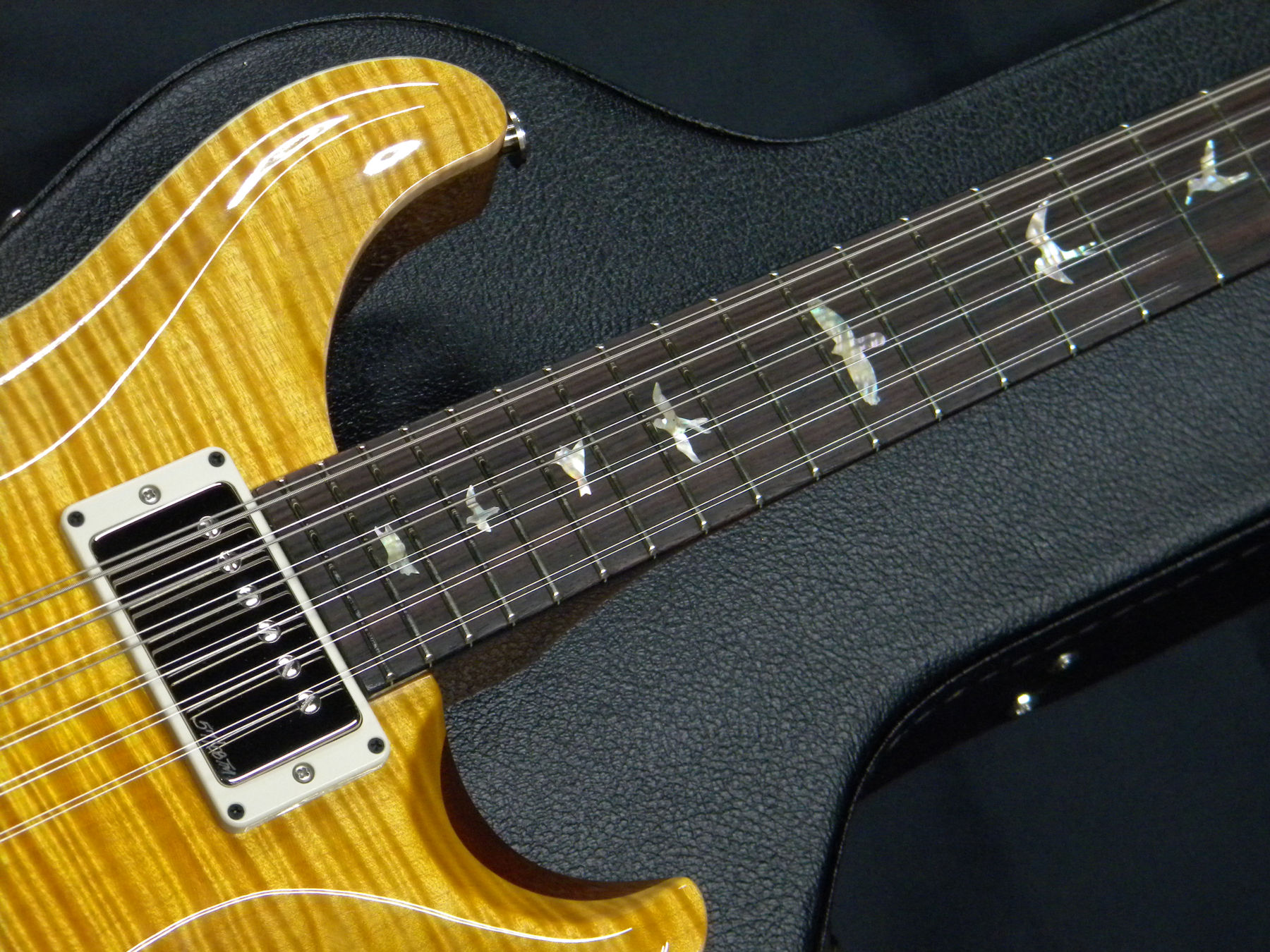 paul reed smith prs 12弦エレキギターhollowbody 10 top 12 strings