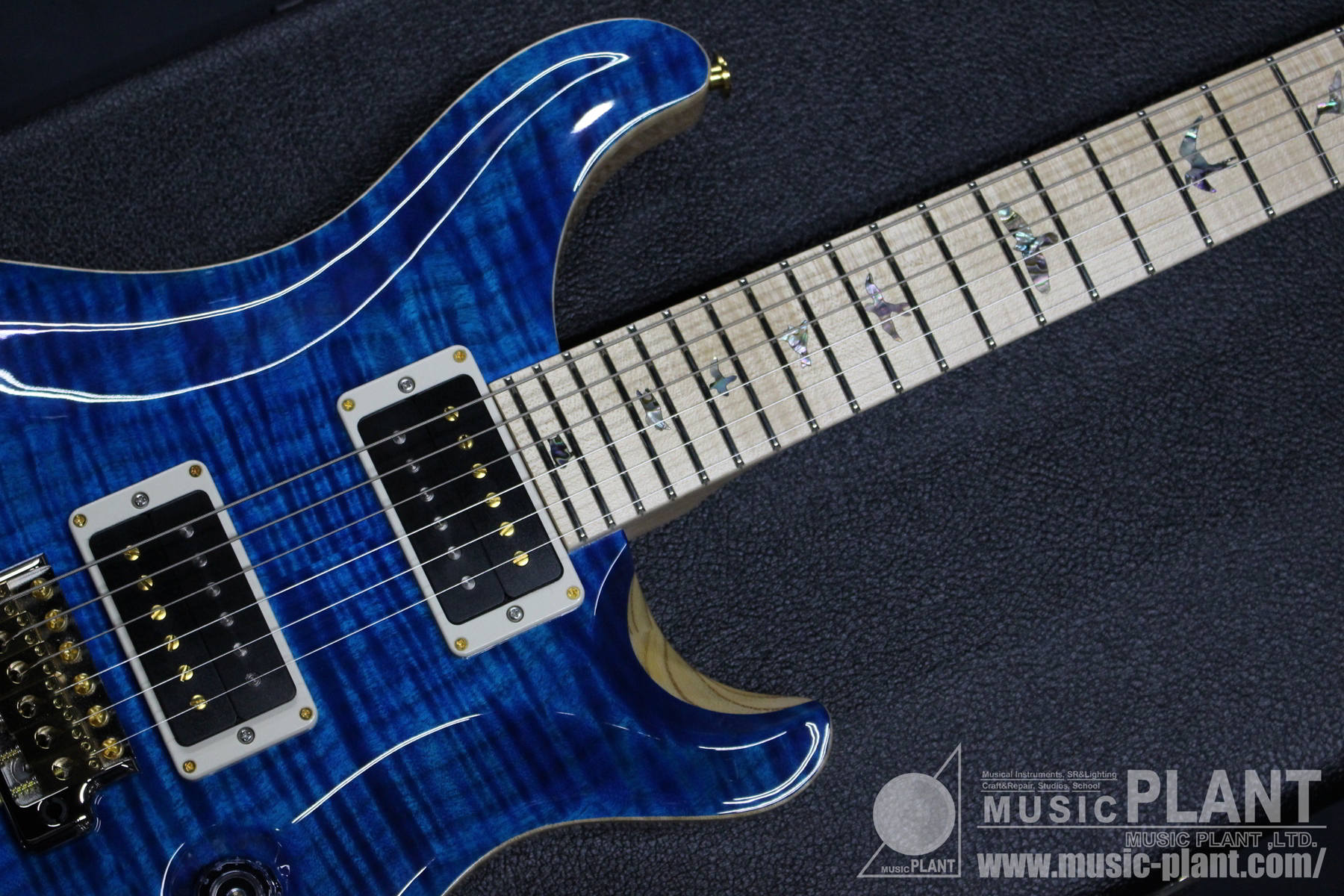 CUSTOM24 Limited SWAMP ASH 10TOP Aquamarine追加画像
