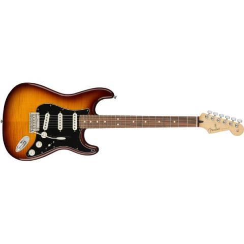 Fender-ストラトキャスターPlayer Stratocaster® Plus Top Tobacco Burst (Pau Ferro Fingerboard)