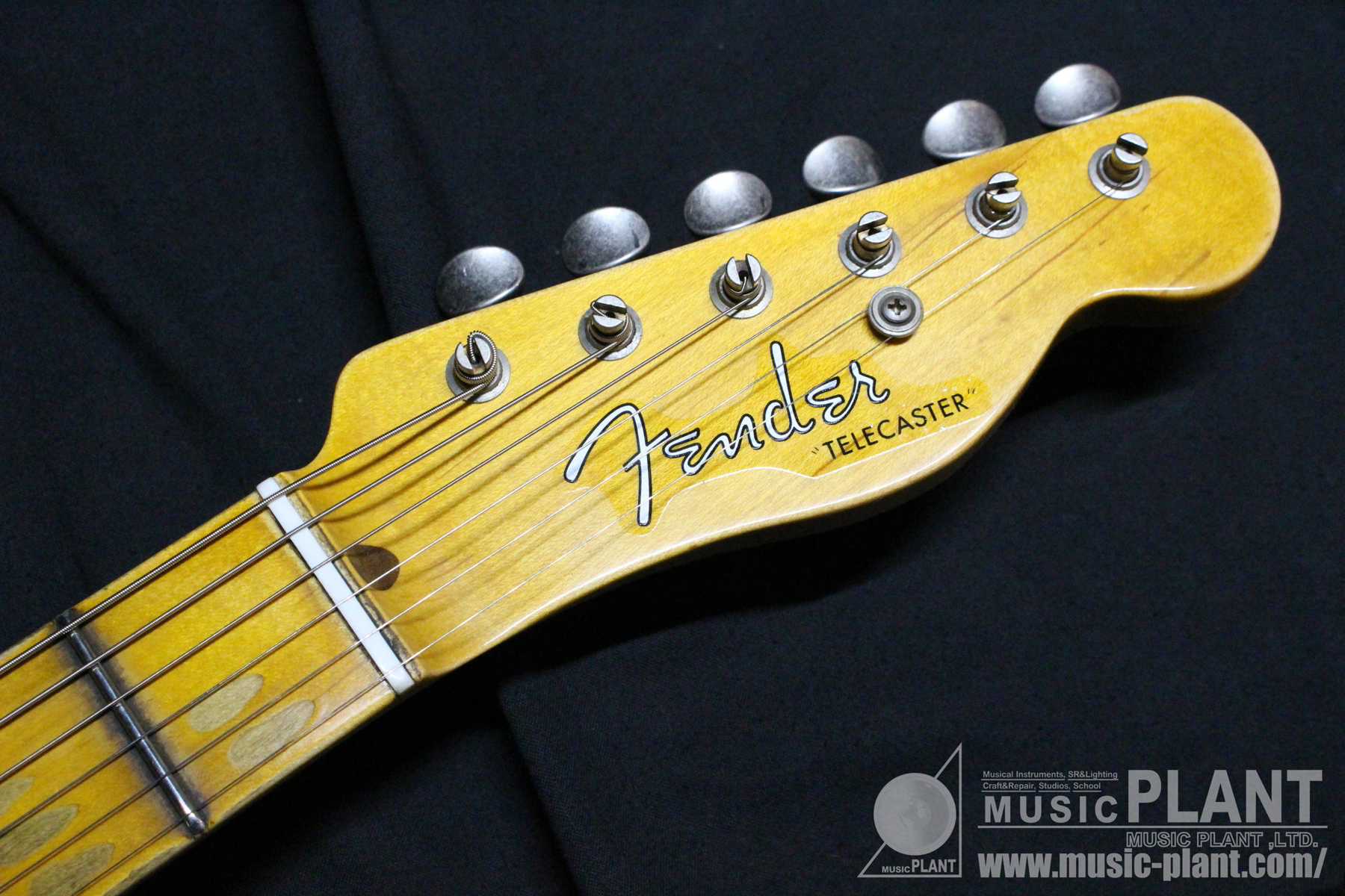 Custom Shop 50s Thinline Tele Journeyman Relic Aged Dirty White Blondeヘッド画像