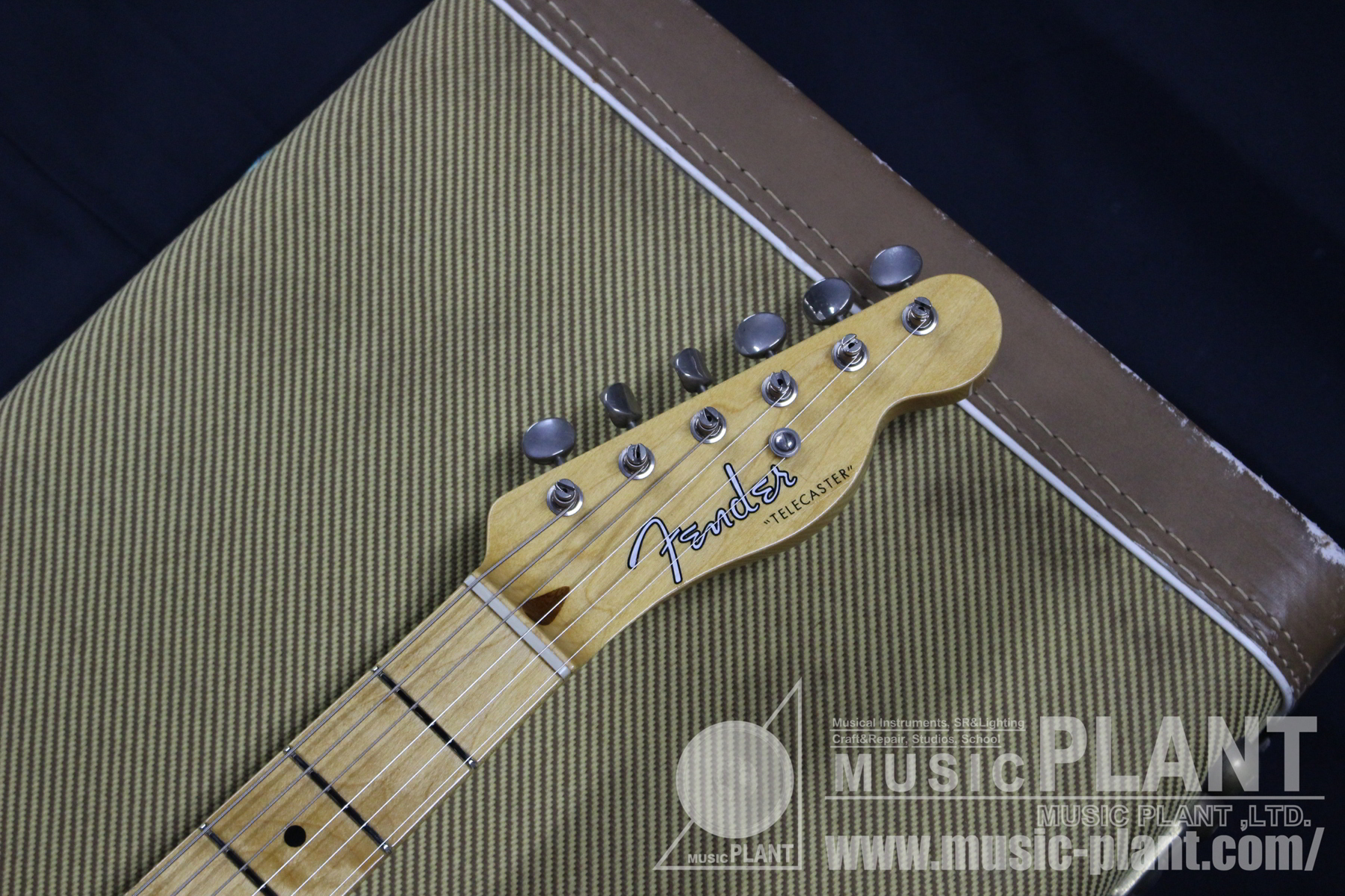 52' Telecaster Naturalヘッド画像