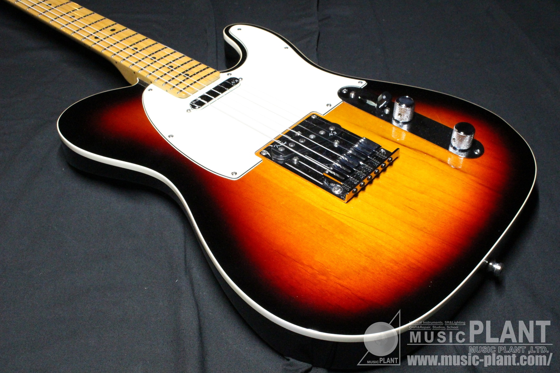 American Deluxe Telecaster N3 3TS追加画像