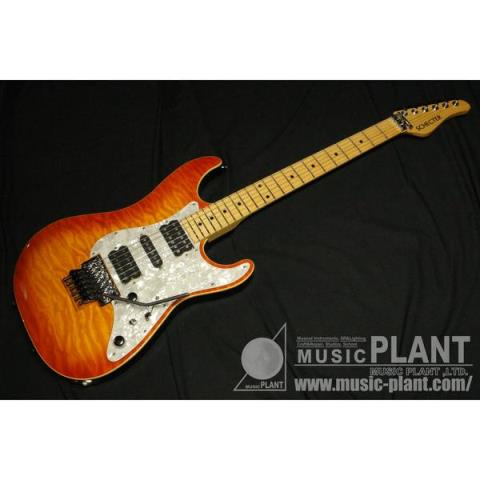 SCHECTER-エレキギターSD-II-22