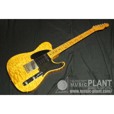 Telecaster typeサムネイル