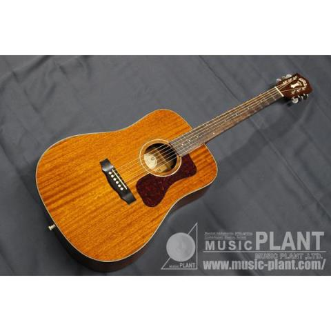 GUILDD-120 Natural