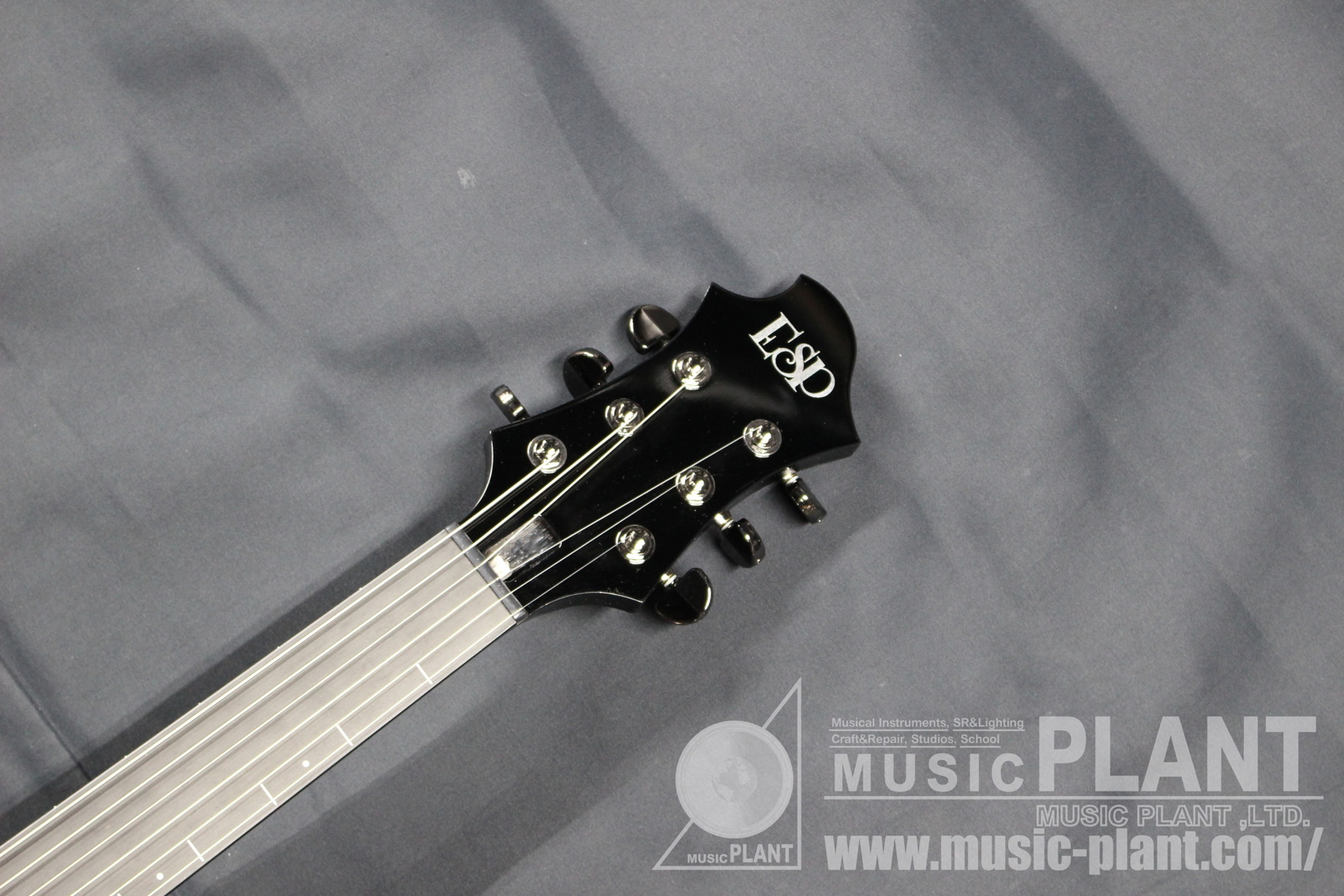 ECLIPSE S-III Fretlessヘッド画像