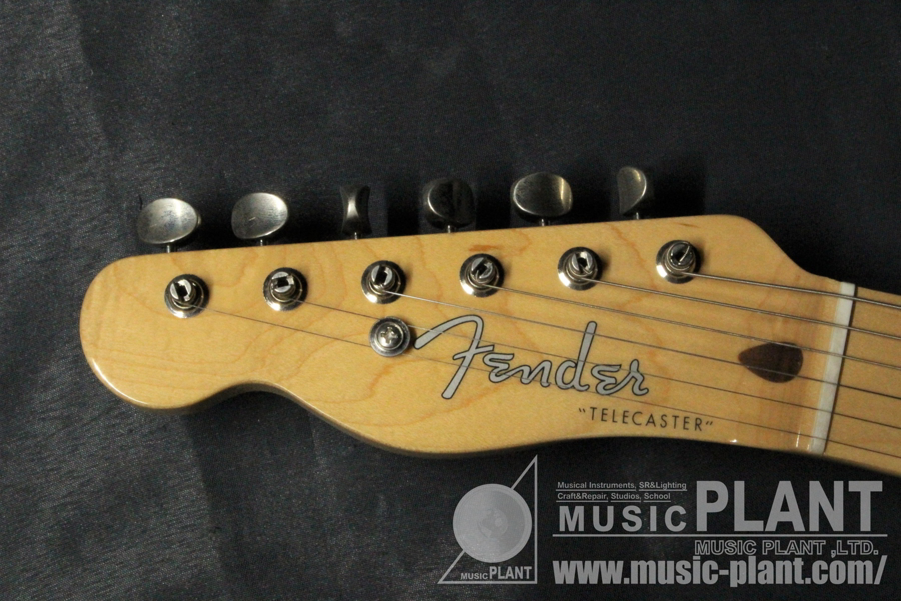 Made in Japan Traditional 50s Telecaster Left-Handed Butterscotch Blondeヘッド画像